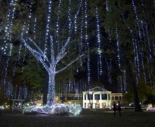 HU brightens up campus with annual lighting ceremony