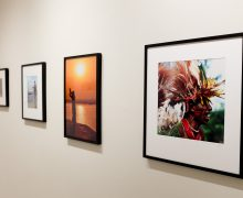 Stevens Art Gallery to feature free photography exhibit by Ellie Hamby