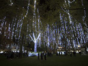 Campus illuminated during annual lighting ceremony
