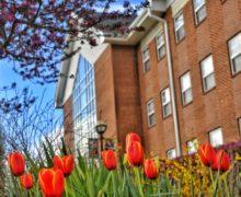 Spring Semester Status Update